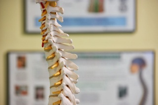 Norwalk CT Doctor Alleviates Work Pain With Chiropractic